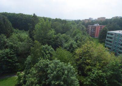 Výhled z okna pokoje